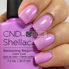 CND Shellac Garden Muse Collection - Beckoning Begonia - swatch by Chickettes.com