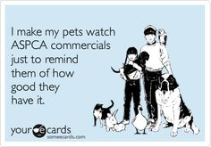I make my pets watch ASPCA commercials just to remind them of how good they have it.