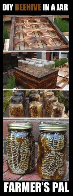 DIY beehive jars