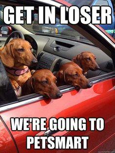 C'mon, Let's Go!