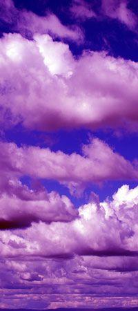 Hey @Elizabeth Mills, I've found our purple skies