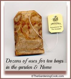 Tea bags are not just for drinking.  Use them after you make the tea in so many ways around the house and garden.   Find out how to recycle them:  http://thegardeningcook.com/tea-bags/
