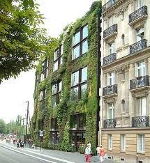 Vertical Garden Installations - Living walls and Vertical Gardens