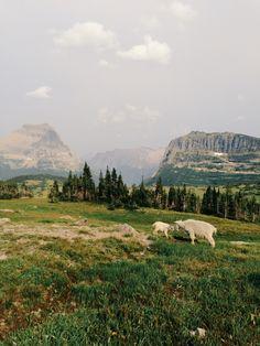 Glacier National Park, Montana; Kevin Russ