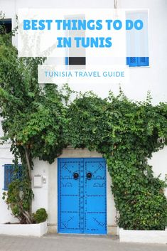 Traveling to Tunisia? Discover the best things to do in and around Tunis #travel #tunisia #africa