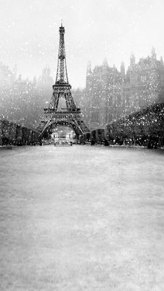 Situé dans le Paris pittoresque, cette toile de fond comporte la tour Eiffel. En noir et blanc, cette belle scène est parfaite pour toute occasion de lhiver.