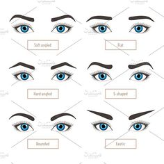 hair beauty - 6 basic eyebrow shape types Classic type and other Vector illustration eyebrows with eyes stock vector illustration with captions Fashion female brow Trimming Poster Types Of Eyebrows, Mircoblading Eyebrows, Threading Eyebrows, Eye Brows, Arched Eyebrows, Eyebrow Threading Shapes, How To Shape Eyebrows, Round Eyebrows, Flawless Makeup