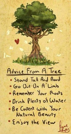Some advice from a tree. From Healthwise Tips facebook page