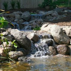 Super Backyard ideas Good looking strategies to organize a captivating small backyard on a budget water features Fun Backyard Ideas and suggestions posted on this imaginative day on 20190116 Large Backyard Landscaping, Backyard Ideas, Landscaping Ideas, Inexpensive Landscaping, Garden Ideas, Landscape Design, Garden Design, Lawn Sprinklers, Rainwater Harvesting