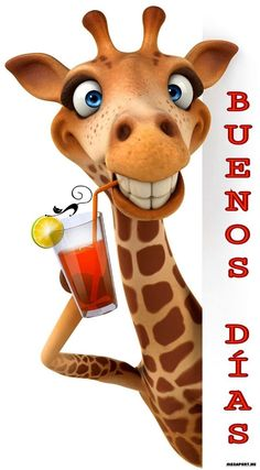Funny Good Morning Memes In Spanish Ideas Funny Pictures With Captions, Funny Animal Pictures, Funny Animals, Funny Giraffe, Giraffe Art, Hump Day Humor, Mom Humor, Bisous Gif, Good Morning In Spanish