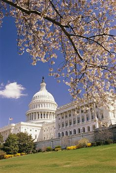 DC Capitol Building  Hours: The Capitol Visitor Center is open to visitors from 8:30 a.m. to 4:30 p.m. Monday through Saturday except for Thanksgiving Day, Christmas Day, New Year's Day and Inauguration Day. Tours of the U.S. Capitol are conducted from 8:50 a.m. to 3:20 p.m., Monday through Saturday. Visitors with official business appointments may enter the Visitor Center as early as 7:15 a.m.  Book a Tour: Tours of the U.S. Capitol are free, but tour passes are required.