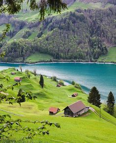Follow @nature for more. Peaceful day  Obwalden Switzerland. Photo by @sennarelax
