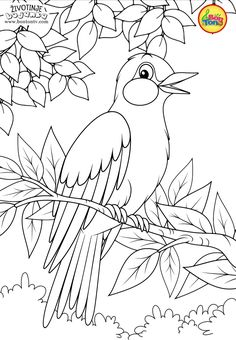 Animals Coloring Pages for Kids - Free Preschool Printables - Životinje Bojanke - Animal Coloring Books by BonTon TV Farm Animal Coloring Pages, Summer Coloring Pages, Easy Coloring Pages, Pattern Coloring Pages, Coloring Sheets For Kids, Coloring Pages To Print, Coloring Books, Art Drawings For Kids, Bird Drawings