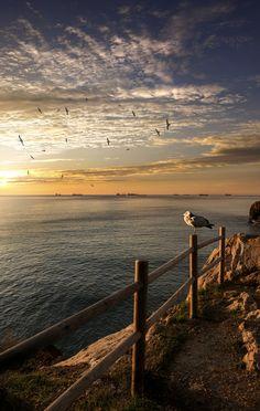 "saenzdesantamaria: "" New year's sun. f6.3 1/100s; ISO 100; FL18mm. © Juan Manuel Sáenz de Santa María, 2017. """