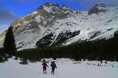 Snowshoe Alberta.