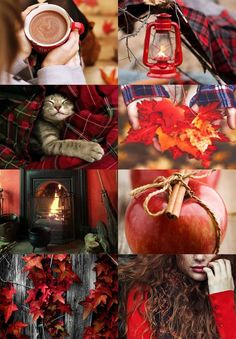 Red and brown Autumn Photography collage mood board