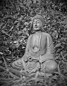 "Siddhartha Gautama, also known as Gautama Buddha, was a great spiritual leader from ancient India (born in Nepal) who founded Buddhism. ""Buddha"" is interpreted to mean ""awakened one"" or ""the enlightened one."" ""The one who understands truth"""