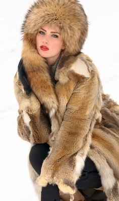 cfd0c355dfb 307 Best Fur 6 images