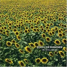 Echo & The Bunnymen - Me, I'm All Smiles: buy CD, Album at Discogs
