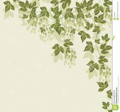 Hops Illustration | Abstract background with green leaves. vector illustration.
