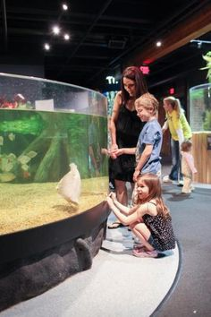 Top 10 Things to Do with Kids in Cleveland | Midwest Living