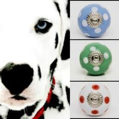 Spots are so in right now, so be like this gorgeous pupper and bring some spots into your home! Draw Knobs, Decorative Door Knobs, Ceramic Knobs, Dalmatians, Knobs And Pulls, Vintage Ceramic, Leo, Bring It On, Ceramics