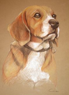 I need to try colored pencil on dark paper like this....LOVE the result! Original Pet Portrait Color Pencil Drawing Buddy by AgatkasPets, $75.00