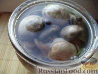 Фото к рецепту: Маринад для грибов