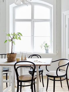 On my wishlist: Thonet chair Bench Furniture, White Furniture, Dining Room Furniture, Bentwood Chairs, Upholstered Chairs, Stylish Chairs, Dining Room Inspiration, Dining Room Chairs, Side Chairs
