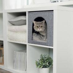 "Ikea& modular ""Kallax"" shelves are known for their flexibility. - Ikea& modular ""Kallax"" shelves are known for their flexibility. Ikea Kallax Shelf, Kallax Shelving Unit, Ikea Kallax Regal, Kallax Ideas, Ikea Cat, Cat Bedroom, Room Deco, Cat Hacks, Cat Shelves"