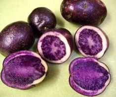 purple sweet potato seeds Real natural vegetable seeds sementes plants for spring farm home ferbi best packaging 2018 HOT Purple Fruit, Purple Food, Purple Vegetables, Veggies, Purple Sweet Potatoes, Blue Potatoes, All Things Purple, Purple Stuff, Purple Reign