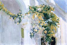 El rosal amarillo de la casa de Sorolla