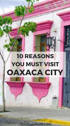 Searching for your next vacation destination? We know you'll love Oaxaca City, Mexico! From street food to folk art, here are ten reasons to visit Oaxaca. Cozumel, Cancun, Mexico Vacation, Mexico Travel, Italy Vacation, Vacation Spots, Oaxaca City Mexico, Mexico Food, Tulum