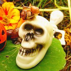 Skulduggery snails