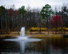Deep Run Park, Henrico County, Virginia