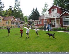 Neighborhood Life