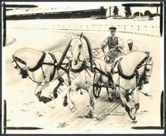 BS PHOTO bhi-837 Laurel International Horse Race Track