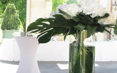 Décoration florale mariage hortensias blancs Glass Vase, Home Decor, White Hydrangeas, Decoration Home, Room Decor, Home Interior Design, Home Decoration, Interior Design