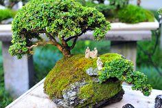 Miniatures by digital.noob, via Flickr