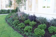 Front Yard Landscaping Design Ideas, Pictures, Remodel, and Decor - page 51