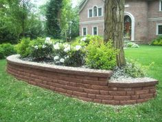 Retaining wall front yard.