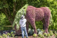 grooming a unicorn plant sculpture at Atlanta Botanical Garden's Imaginary Worlds exhibition http://wayinto.com/atlanta/imaginary-worlds/