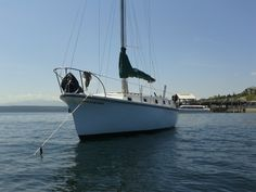 On the hook in Port Townsend WA