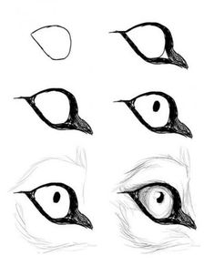 Good Absolutely Free wolf drawing tutorial Suggestions : Learn how to draw with these tutorials, which teach you to draw animals, people, flowers, landscapes and more. Animal Sketches, Animal Drawings, Drawing Sketches, Drawing Animals, Sketch Art, Sketching, Realistic Eye Drawing, Drawing Eyes, Wolf Eye Drawing