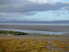Morecambe bay Nobby, Morecambe, Landscape, Beach, Water, Travel, Painting, Outdoor, Ideas