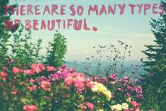 There are so many types of beautiful.
