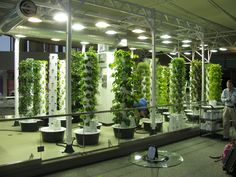 Aeroponic Garden at Chicago's Airport. Wow! #NewGardening