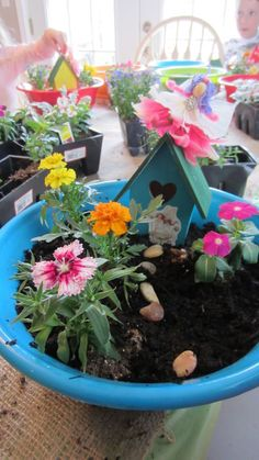 Best of both worlds - build a fairy garden! (Maybe easier than a terrarium, can use dollar store containers and Fairy House kit items, and a few little plants)