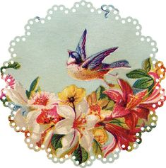 103 Doilies, Variety of Patterns and Prints
