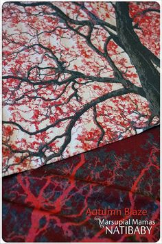 Natibaby Tree Autumn Blaze Wrap (wool)